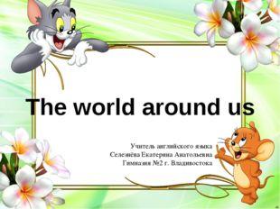 The world around us Учитель английского языка Селезнёва Екатерина Анатольевна