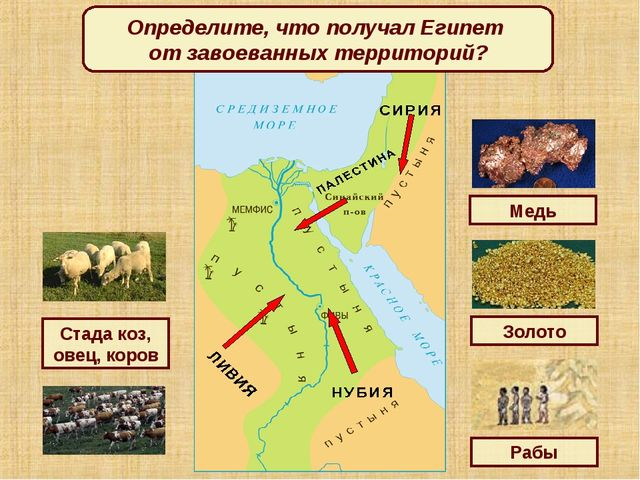 Определите, что получал Египет от завоеванных территорий? Золото Медь Стада к...
