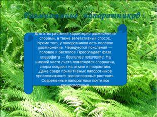 Для этих растений характерно размножение спорами, а также вегетативный способ
