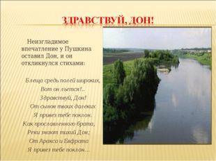Неизгладимое впечатление у Пушкина оставил Дон, и он откликнулся стихами: Б