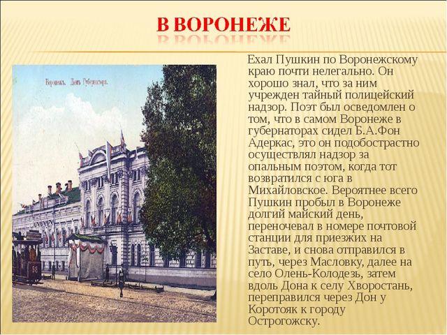 Ехал Пушкин по Воронежскому краю почти нелегально. Он хорошо знал, что за ни...