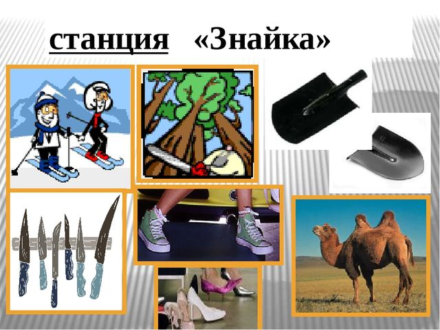 станция «Знайка»