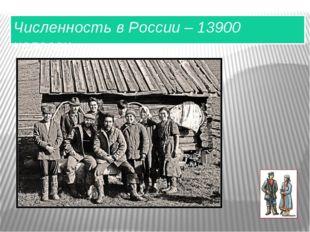 Численность в России – 13900 человек.