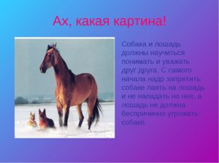 Ах, какая картина! Собака и лошадь должны научиться понимать и уважать друг д