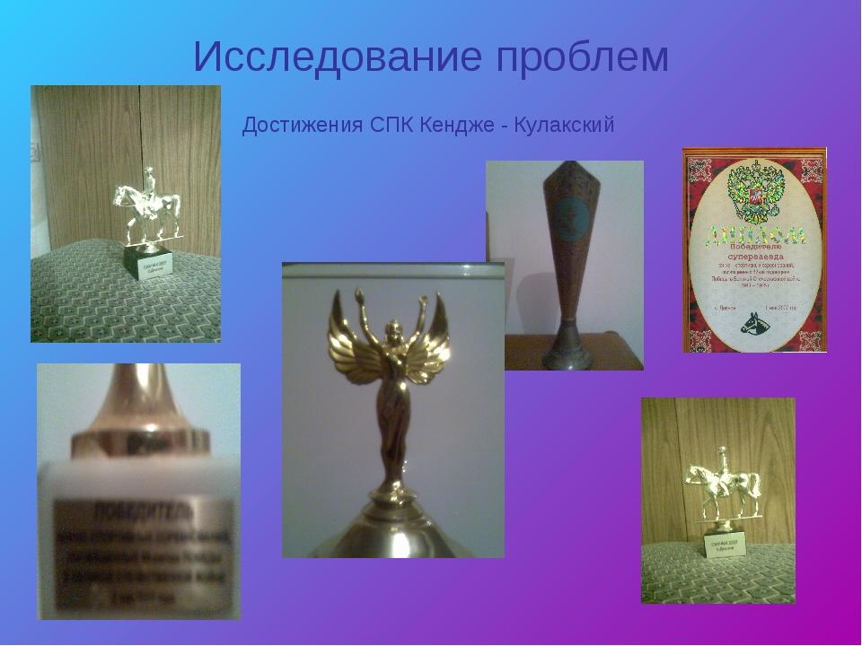 Исследование проблем Достижения СПК Кендже - Кулакский
