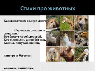 Как животных в мире много Страшных, милых и смешных. Все бредут своей дорогой