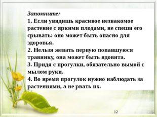 Запомните: 1. Если увидишь красивое незнакомое растение с яркими плодами, не