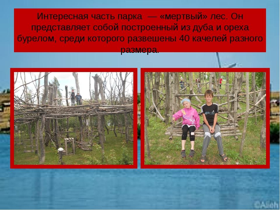 Интересная часть парка — «мертвый» лес. Он представляет собой построенный из...