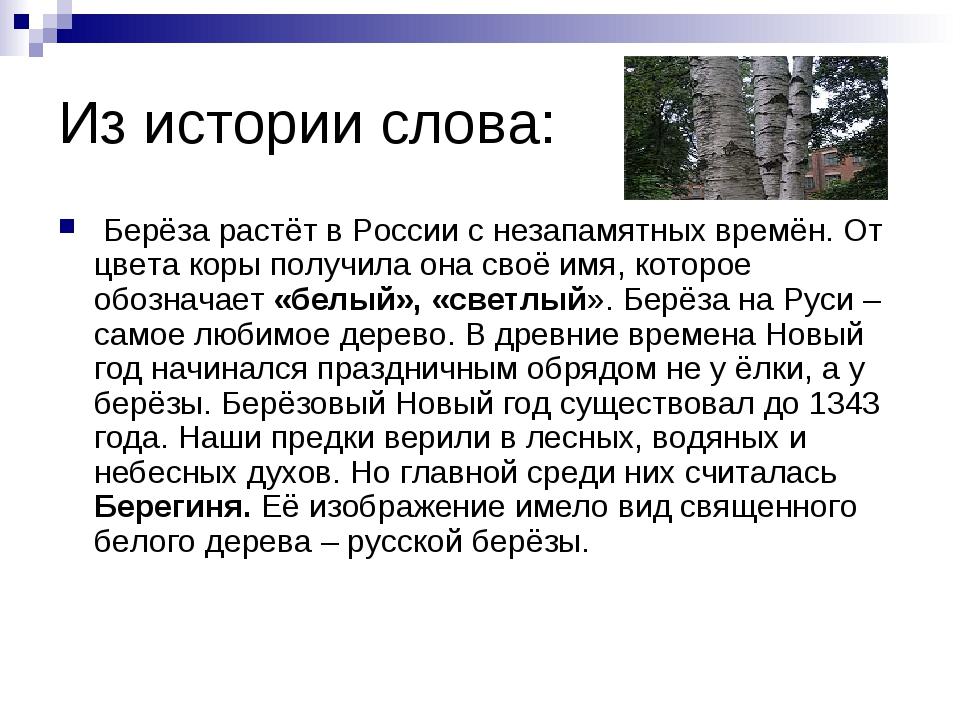 Из истории слова: Берёза растёт в России с незапамятных времён. От цвета коры...