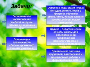 Задачи: Гигиеническое нормирование учебной нагрузки, объема д/з и режима дня.