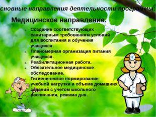 Основные направления деятельности программы: Медицинское направление. Создани