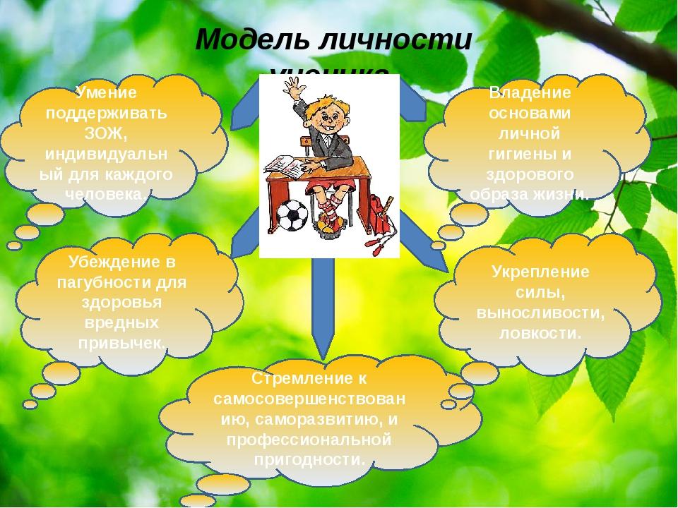 Модель личности ученика. Стремление к самосовершенствованию, саморазвитию, и...