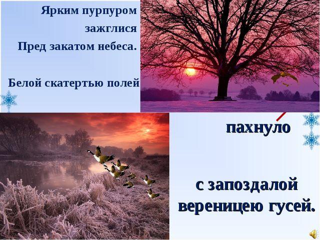 пахнуло Белой скатертью полей Ярким пурпуром зажглися Пред закатом небеса. с...