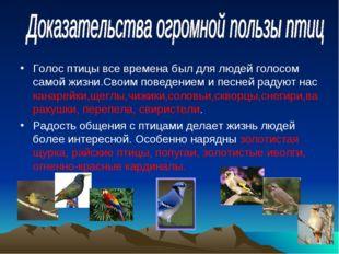 Голос птицы все времена был для людей голосом самой жизни.Своим поведением и