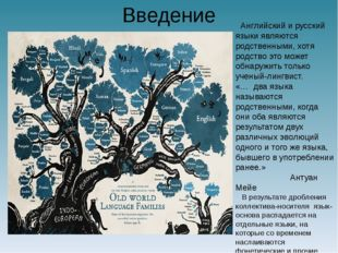 Введение Английский и русский языки являются родственными, хотя родство это м