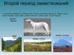 Второй период заимствований 5.Названия природных особенностей России и некот
