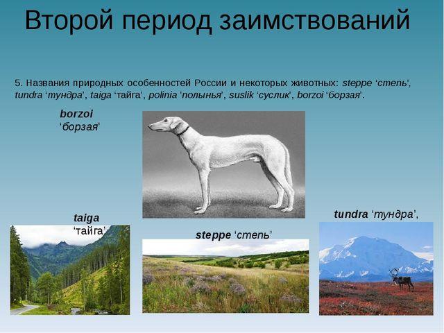 Второй период заимствований 5.Названия природных особенностей России и некот...