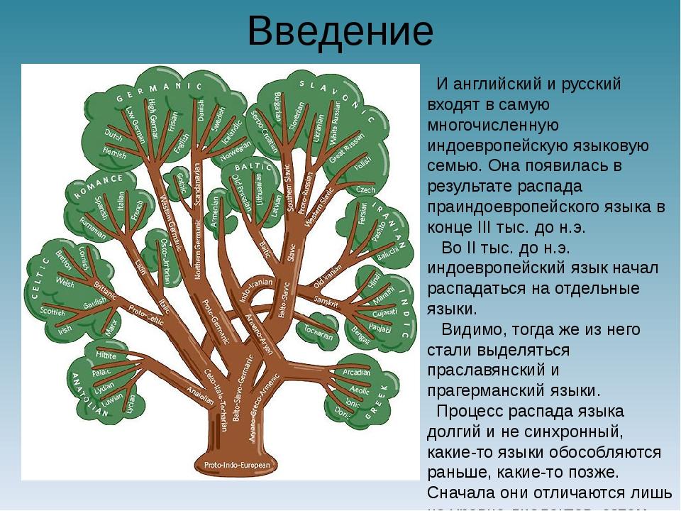 Введение И английский и русский входят в самую многочисленную индоевропейскую...