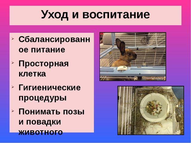 Уход и воспитание Сбалансированное питание Просторная клетка Гигиенические пр...