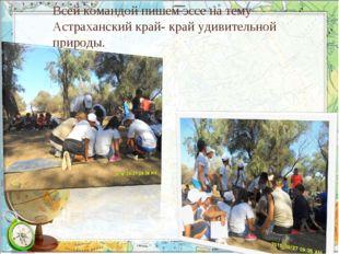 Всей командой пишем эссе на тему Астраханский край- край удивительной природы.