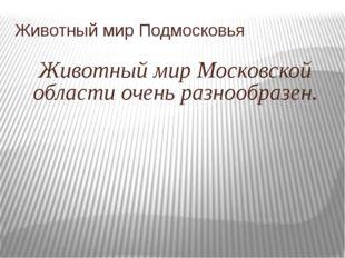 Животный мир Подмосковья Животный мир Московской области очень разнообразен.