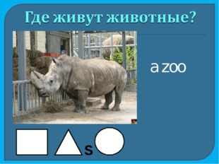 a zoo S