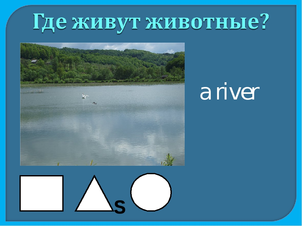 a river S
