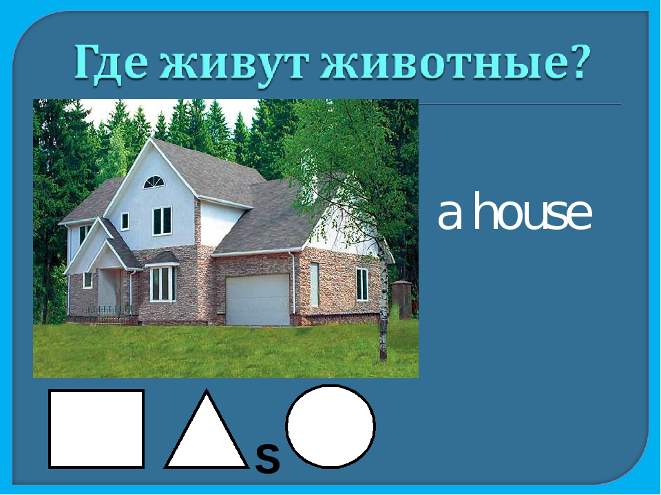 a house S