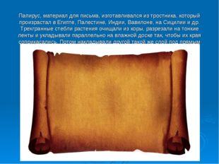 Папирус, материал для письма, изготавливался из тростника, который произраста
