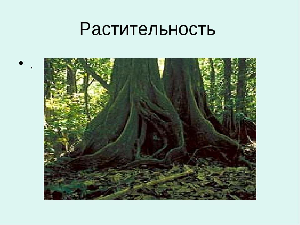 Растительность .