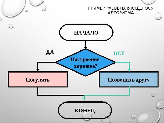 ПРИМЕР РАЗВЕТВЛЯЮЩЕГОСЯ АЛГОРИТМА