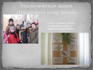 Экологическая акция «Покормите птиц зимой» Конкурс семейного рисунка «Самая