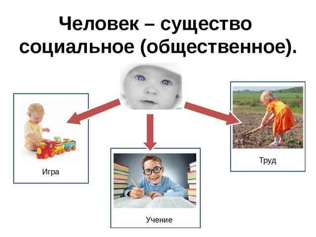 Человек – существо социальное (общественное). Игра Труд Учение