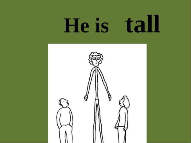 He is tall
