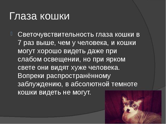 Глаза кошки Светочувствительность глаза кошки в 7 раз выше, чем у человека, и...