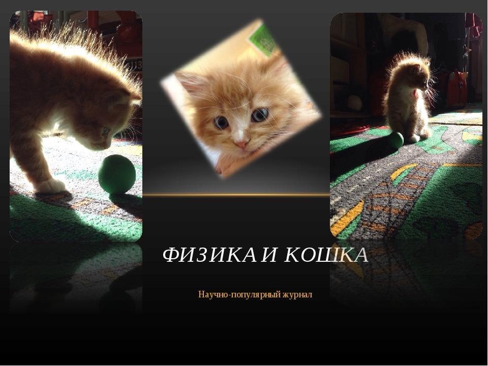 Научно-популярный журнал ФИЗИКА И КОШКА