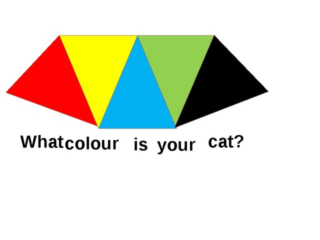 What colour is your cat?