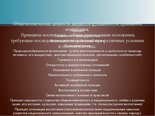 Принцип Социального взаимодействия Взаимодействия и сотрудничества Самоуправл...