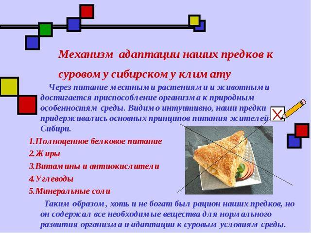 Механизм адаптации наших предков к суровому сибирскому климату Через питание...