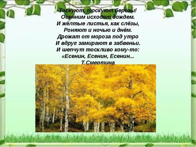 Тоскуют, тоскуют берёзы! Осенним исходят дождем. И жёлтые листья, как слёзы,...