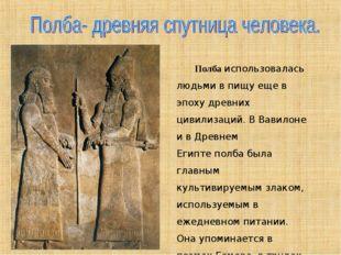 Полбаиспользовалась людьми в пищу еще в эпоху древних цивилизаций. В Вавило