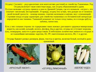 Огурец ( Cucumis) – род однолетних или многолетних растений из семейства Тыкв