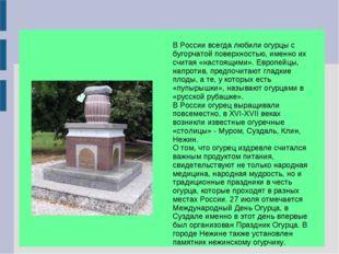 В России всегда любили огурцы с бугорчатой поверхностью, именно их считая «н
