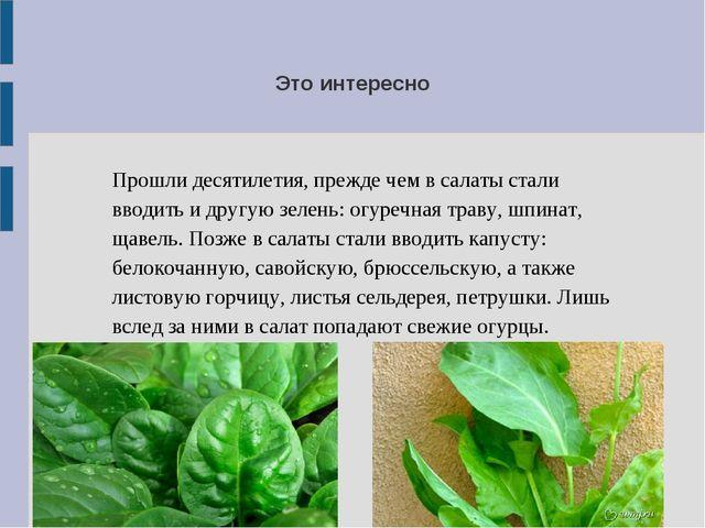 Прошли десятилетия, прежде чем в салаты стали вводить и другую зелень: огуреч...