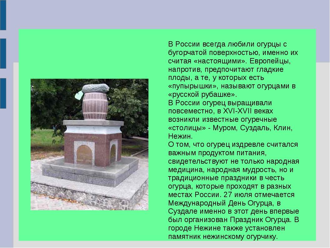 В России всегда любили огурцы с бугорчатой поверхностью, именно их считая «н...
