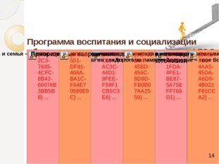 Программа воспитания и социализации обучающихся в условиях реализации ФГОС «