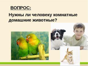ВОПРОС: Нужны ли человеку комнатные домашние животные?