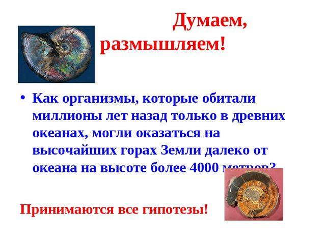 Думаем, размышляем! Как организмы, которые обитали миллионы лет назад только...