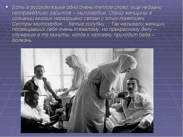 Есть в русском языке одно очень теплое слово, еще недавно несправедливо забыт...
