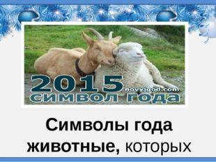 Символы года животные,которых уважают и поклоняются – это соблюдение старинн